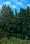 Summer Trees 35x50 cm, oil on canvas, 2011.